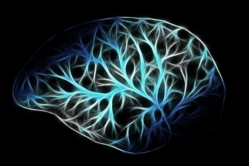 illustration of brain in blue colors on black background - neural