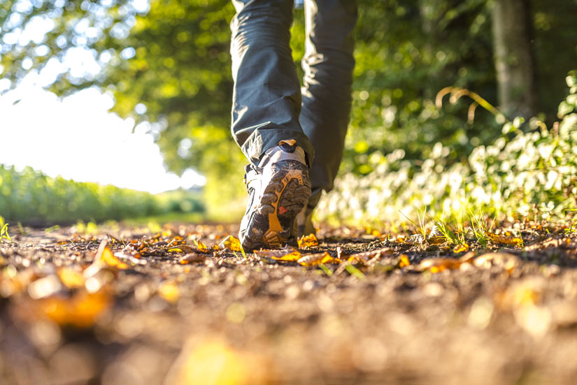 closeup of tennis shoes walking on nature path - outdoors